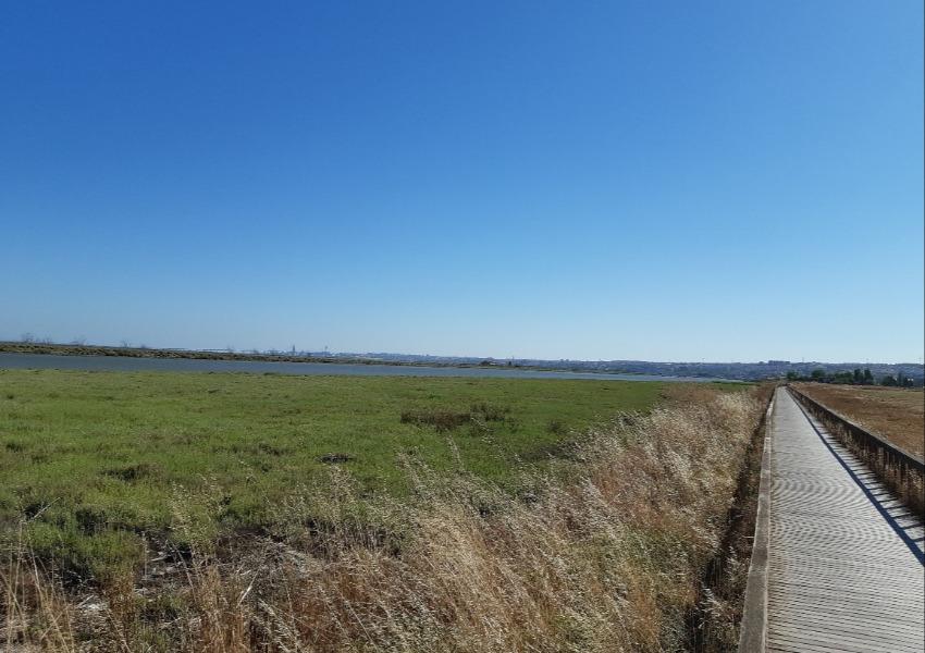 Petition for the creation of the Local Natural Reserve of Salinas de Alverca - Forte da Casa